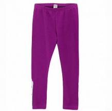 Купить леггинсы mirdada, цвет: фиолетовый ( id 11909938 )