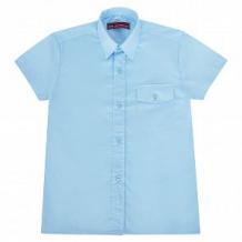 Купить рубашка атрус, цвет: голубой ( id 10659848 )