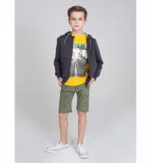 Купить шорты luminoso кактусы, цвет: хаки ( id 10339094 )