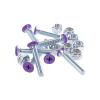 Винты для лонгборда Penny Deck Bolts Purple Phillips 1 1/8 фиолетовый 1086940